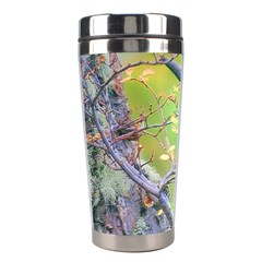 Woodpecker At Forest Pecking Tree, Patagonia, Argentina Stainless Steel Travel Tumblers