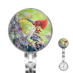 Woodpecker At Forest Pecking Tree, Patagonia, Argentina Stainless Steel Nurses Watch