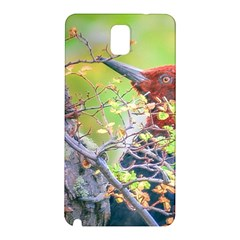 Woodpecker At Forest Pecking Tree, Patagonia, Argentina Samsung Galaxy Note 3 N9005 Hardshell Back Case