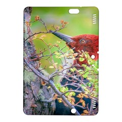 Woodpecker At Forest Pecking Tree, Patagonia, Argentina Kindle Fire HDX 8.9  Hardshell Case