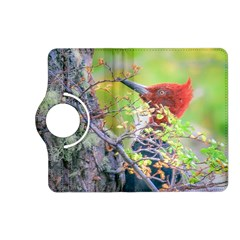 Woodpecker At Forest Pecking Tree, Patagonia, Argentina Kindle Fire HD (2013) Flip 360 Case