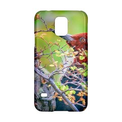 Woodpecker At Forest Pecking Tree, Patagonia, Argentina Samsung Galaxy S5 Hardshell Case