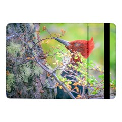 Woodpecker At Forest Pecking Tree, Patagonia, Argentina Samsung Galaxy Tab Pro 10.1  Flip Case