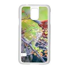 Woodpecker At Forest Pecking Tree, Patagonia, Argentina Samsung Galaxy S5 Case (White)
