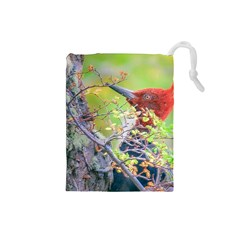 Woodpecker At Forest Pecking Tree, Patagonia, Argentina Drawstring Pouches (Small)