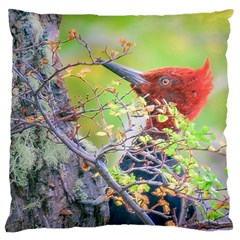 Woodpecker At Forest Pecking Tree, Patagonia, Argentina Large Flano Cushion Case (One Side)