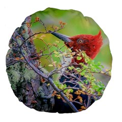 Woodpecker At Forest Pecking Tree, Patagonia, Argentina Large 18  Premium Flano Round Cushions