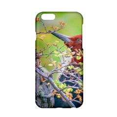 Woodpecker At Forest Pecking Tree, Patagonia, Argentina Apple iPhone 6/6S Hardshell Case
