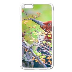 Woodpecker At Forest Pecking Tree, Patagonia, Argentina Apple iPhone 6 Plus/6S Plus Enamel White Case