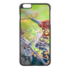 Woodpecker At Forest Pecking Tree, Patagonia, Argentina Apple iPhone 6 Plus/6S Plus Black Enamel Case