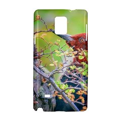 Woodpecker At Forest Pecking Tree, Patagonia, Argentina Samsung Galaxy Note 4 Hardshell Case