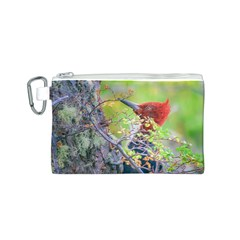 Woodpecker At Forest Pecking Tree, Patagonia, Argentina Canvas Cosmetic Bag (S)