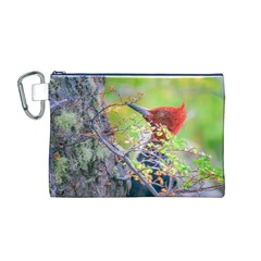 Woodpecker At Forest Pecking Tree, Patagonia, Argentina Canvas Cosmetic Bag (M)