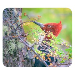 Woodpecker At Forest Pecking Tree, Patagonia, Argentina Double Sided Flano Blanket (Small)