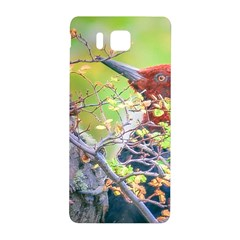 Woodpecker At Forest Pecking Tree, Patagonia, Argentina Samsung Galaxy Alpha Hardshell Back Case