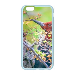 Woodpecker At Forest Pecking Tree, Patagonia, Argentina Apple Seamless iPhone 6/6S Case (Color)