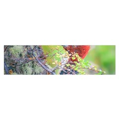Woodpecker At Forest Pecking Tree, Patagonia, Argentina Satin Scarf (Oblong)