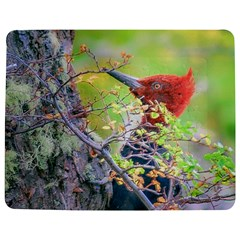 Woodpecker At Forest Pecking Tree, Patagonia, Argentina Jigsaw Puzzle Photo Stand (Rectangular)