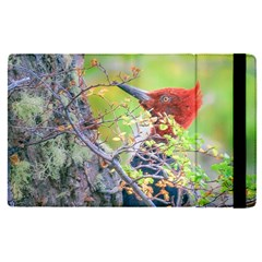 Woodpecker At Forest Pecking Tree, Patagonia, Argentina Apple iPad Pro 12.9   Flip Case