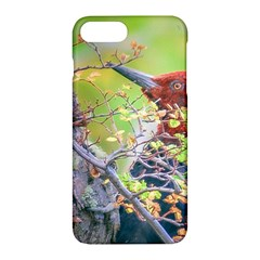 Woodpecker At Forest Pecking Tree, Patagonia, Argentina Apple iPhone 7 Plus Hardshell Case