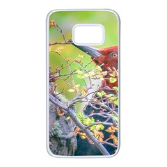 Woodpecker At Forest Pecking Tree, Patagonia, Argentina Samsung Galaxy S7 White Seamless Case