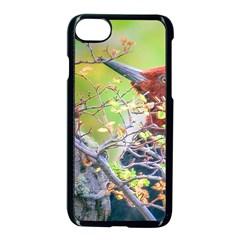 Woodpecker At Forest Pecking Tree, Patagonia, Argentina Apple Iphone 7 Seamless Case (black)