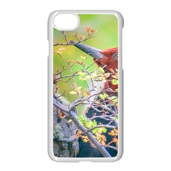 Woodpecker At Forest Pecking Tree, Patagonia, Argentina Apple iPhone 7 Seamless Case (White)