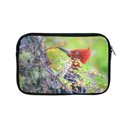 Woodpecker At Forest Pecking Tree, Patagonia, Argentina Apple MacBook Pro 13  Zipper Case
