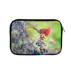 Woodpecker At Forest Pecking Tree, Patagonia, Argentina Apple MacBook Pro 15  Zipper Case