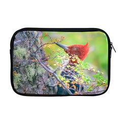 Woodpecker At Forest Pecking Tree, Patagonia, Argentina Apple MacBook Pro 17  Zipper Case