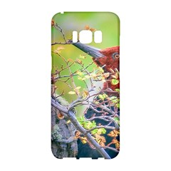 Woodpecker At Forest Pecking Tree, Patagonia, Argentina Samsung Galaxy S8 Hardshell Case