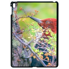 Woodpecker At Forest Pecking Tree, Patagonia, Argentina Apple Ipad Pro 9 7   Black Seamless Case
