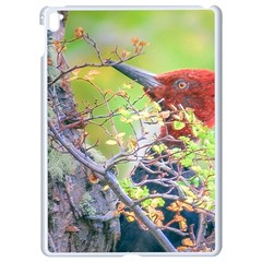 Woodpecker At Forest Pecking Tree, Patagonia, Argentina Apple iPad Pro 9.7   White Seamless Case