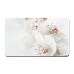 Orchids Flowers White Background Magnet (Rectangular)