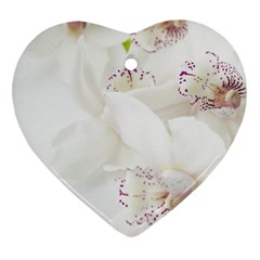 Orchids Flowers White Background Heart Ornament (two Sides)