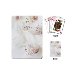 Orchids Flowers White Background Playing Cards (mini)