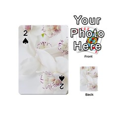 Orchids Flowers White Background Playing Cards 54 (mini)