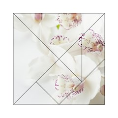 Orchids Flowers White Background Acrylic Tangram Puzzle (6  X 6 )