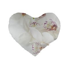 Orchids Flowers White Background Standard 16  Premium Heart Shape Cushions