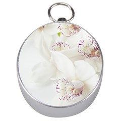 Orchids Flowers White Background Silver Compasses