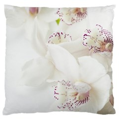 Orchids Flowers White Background Large Flano Cushion Case (One Side)