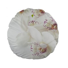 Orchids Flowers White Background Standard 15  Premium Flano Round Cushions