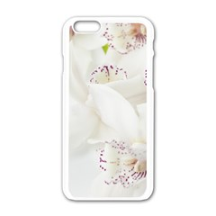 Orchids Flowers White Background Apple Iphone 6/6s White Enamel Case