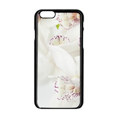 Orchids Flowers White Background Apple iPhone 6/6S Black Enamel Case
