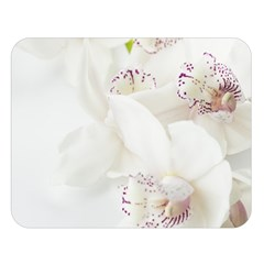 Orchids Flowers White Background Double Sided Flano Blanket (large)