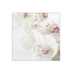 Orchids Flowers White Background Satin Bandana Scarf