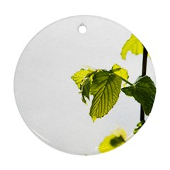 Leaves Nature Ornament (round)