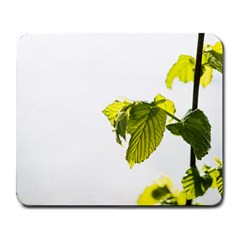 Leaves Nature Large Mousepads