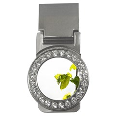 Leaves Nature Money Clips (cz)