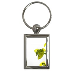 Leaves Nature Key Chains (rectangle)